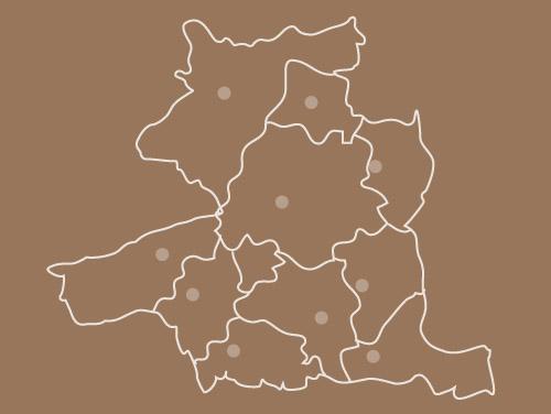 logo suport municipal